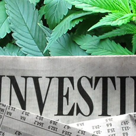 Cannabis Investing 2